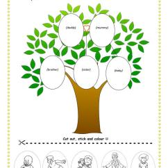 Printable Blank Family Tree Diagram Mitosis Worksheet Amp Identification Answers - Free Esl Worksheets Made By Teachers