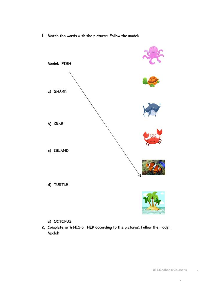 Transportation, Sea animals, colors and shapes worksheet