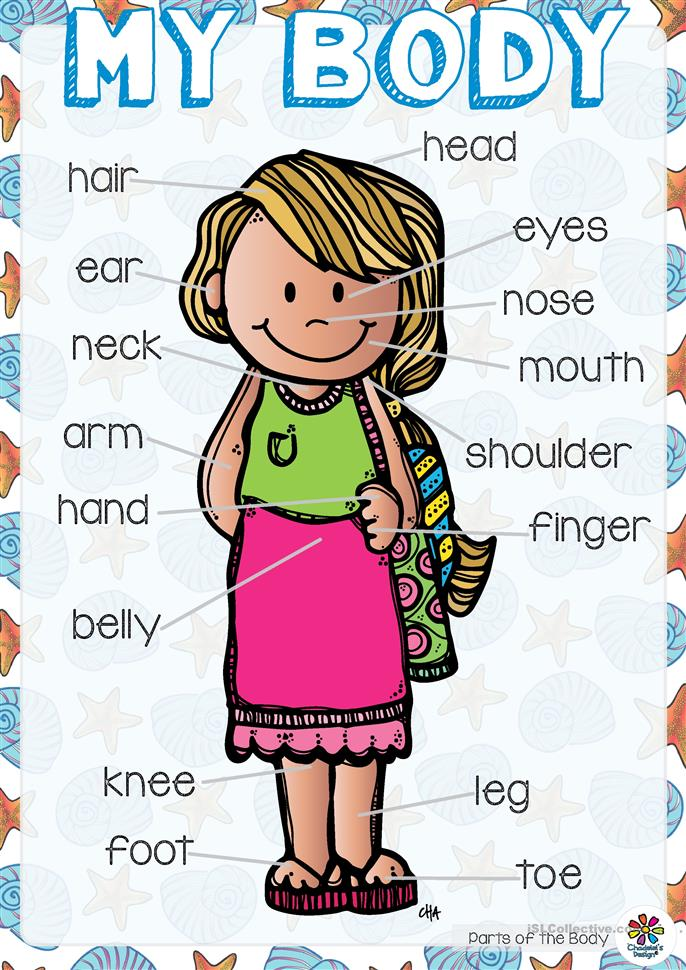English with Rocky and Stars: The body- 4th grade