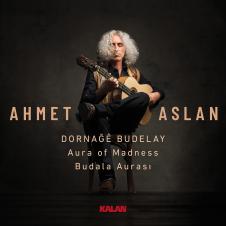 Budala Aurası –Ahmet Aslan