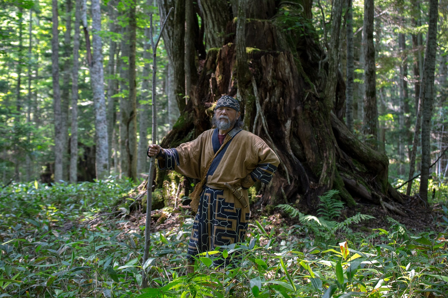 Discover the mystery of the Ainu