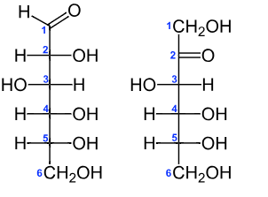 Which of the following statements about monosaccharide