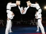 Members of the WTF Taekwondo Presentation Team.