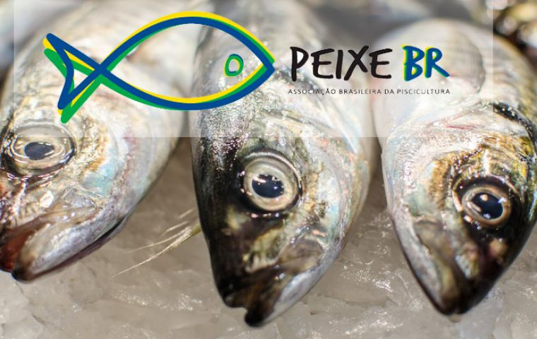 "Peixe BR regrets ""the lack of attention"" to national aquaculture by government and demands measures to impede imperiling the conquest of new business partners."