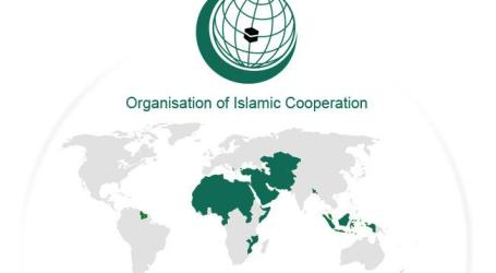 OIC WELCOMES BELGIUM PARLIAMENT'S RESOLUTION RECOGNISING PALESTINE