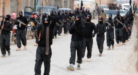 DOZENS GERMAN MILITANTS KILLED IN IRAQ, SYRIA