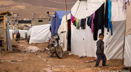 AMNESTY INTERNATIONAL CRITICISES WORLD FAILURE TO DEAL WITH SYRIAN REFUGEES 'SHAMEFUL'