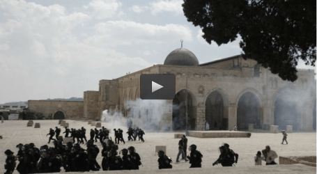 SOME 14,000 ISRAELIS RAIDED AL-AQSA MOSQUE IN 2014 : NGO