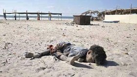 NGO'S CALL FOR RE-INVESTIGATING THE KILLING OF 4 CHILDREN ON GAZA BEACH
