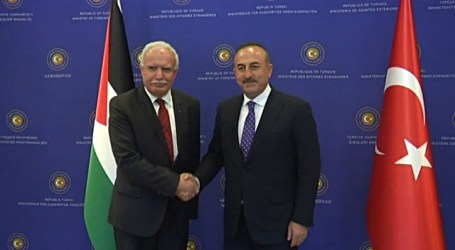 Turkey 'to Support Middle East Peace Process'