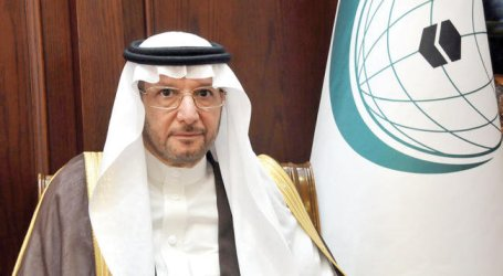 OIC Welcomes Palestinian Peace Plan