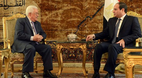 Egypt Continues to Press for Palestine-Israel Talks' Resumption, Says Sisi