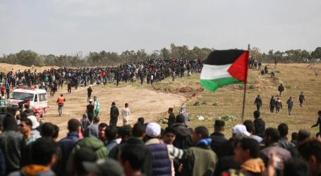 Muslim Scholars Call for Protests to Support Palestine