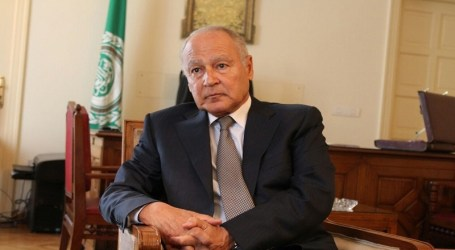 Arab League Chief Meets Chinese VP in Beijing