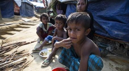 UN Chief Pens Op-ed World for Rohingya Plight