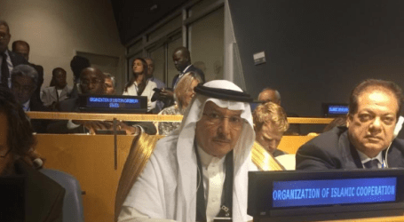 OIC Raising Rohingya Plight at UN General Assembly in New York