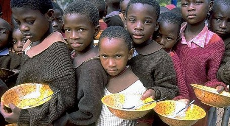 UN: The Number of Hungry People in the World Has Risen to 815 Million