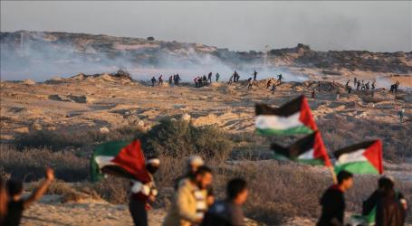 Israeli Forces Injure 46 Palestinians at Gaza Border