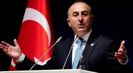 Turkey Condemns Israel for Unrenew TIPH's Mandate