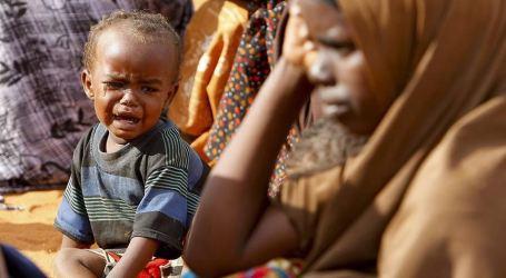 UN Names 10 Countries Facing Food Insecurity