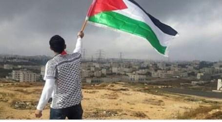 Palestine Needs Educational Investment