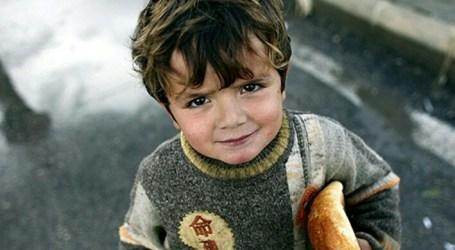 UN Warns Palestinian Economic Destruction