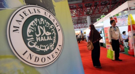 KNEKS: Halal Industry is Experiencing Delight Development