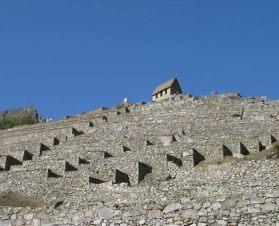 Sentinel in Machu Picchu