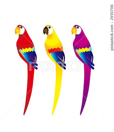 一隻鸚鵡-插圖素材 [2950706] - PIXTA圖庫