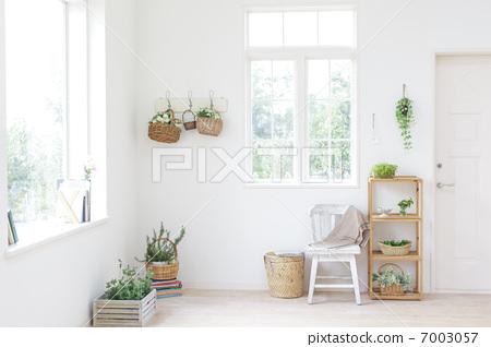 植物裝飾的房間-照片素材(圖片) [7003057] - PIXTA圖庫
