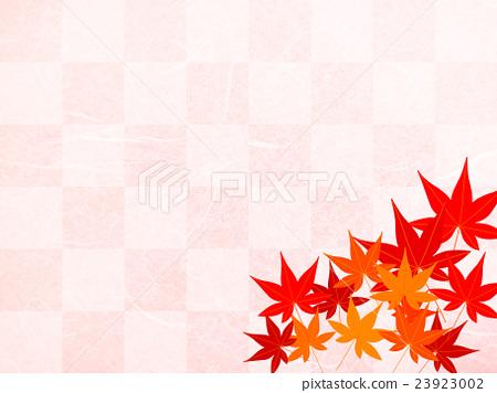 秋天槭樹背景 - 驗查員樣式-插圖素材 [23923002] - PIXTA圖庫
