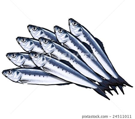 Iwashi沙丁魚Iwashi例證-插圖素材 [24511011] - PIXTA圖庫