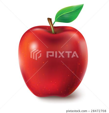 Vector illustration of a juicy apple-插圖素材 [28472708] - PIXTA圖庫
