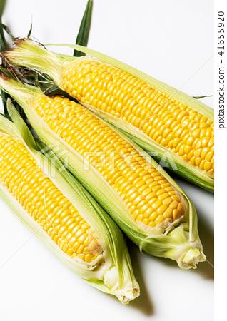 corn stock photo 41655920