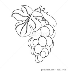 Bunch of yellow grapes icon in outline style Stock Illustration [45533776] PIXTA