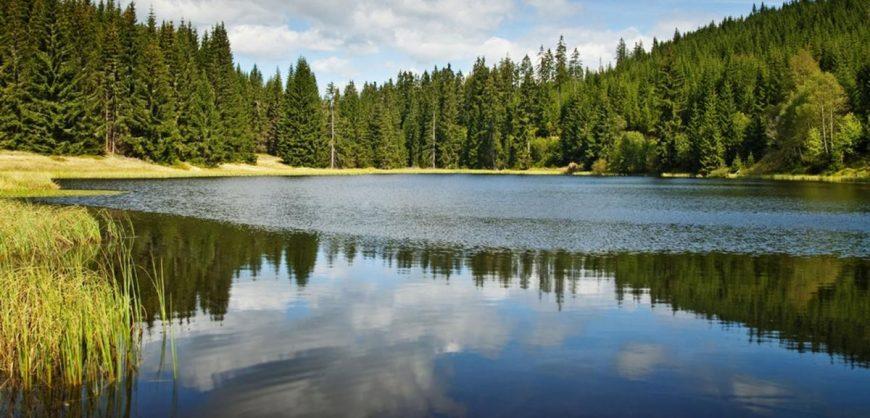 Resultado de imagem para Natural Lake
