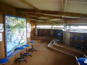 In the hide, seats, telescopes and birds guides are at your disposal © RNN St Denis du Payré
