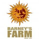Logo Barneys Farm