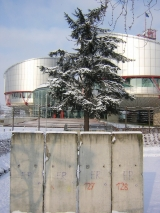 """<h5>Thanks francois</h5><p><a href=""""http://commons.wikimedia.org/wiki/File:Piece_of_Berlin_Wall_in_front_of_the_European_Court_of_Human_Rights,_Strasbourg.jpg#mediaviewer/File:Piece_of_Berlin_Wall_in_front_of_the_European_Court_of_Human_Rights,_Strasbourg.jpg&quot;"""" target=""""_blank"""">Piece of Berlin Wall in front of the European Court of Human Rights, Strasbourg</a>"""" by <a class=""""external text"""" href=""""http://www.flickr.com/photos/54576824@N00"""" target=""""_blank"""" rel=""""nofollow"""">francois</a> from Strasbourg, france - <a class=""""external text"""" href=""""http://www.flickr.com/photos/frenchy/79366435/"""" target=""""_blank"""" rel=""""nofollow"""">Part of the berlin wall in front of the Human's Right building</a>. Licensed under <a title=""""Creative Commons Attribution 2.0"""" href=""""http://creativecommons.org/licenses/by/2.0"""" target=""""_blank"""">CC BY 2.0</a> via <a href=""""//commons.wikimedia.org/wiki/"""" target=""""_blank"""">Wikimedia Commons</a>.</p>"""