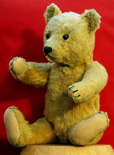 Bear  WikiFur the furry encyclopedia