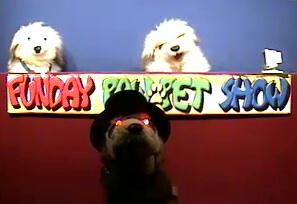 Poink T Ferret Wikifur The Furry Encyclopedia