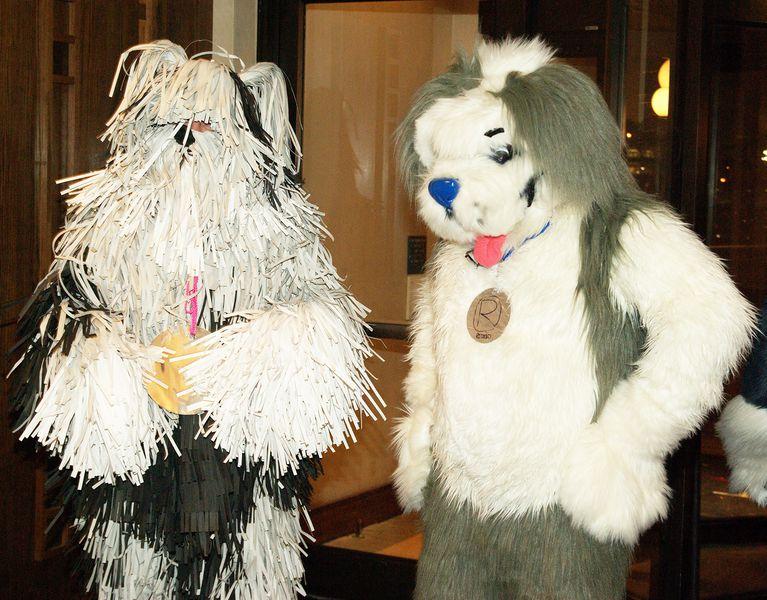 Boomer The Dog  WikiFur the furry encyclopedia