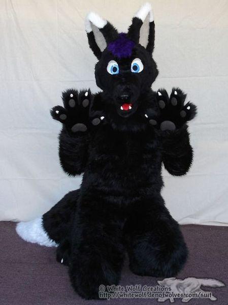 Wolfpaw  WikiFur the furry encyclopedia