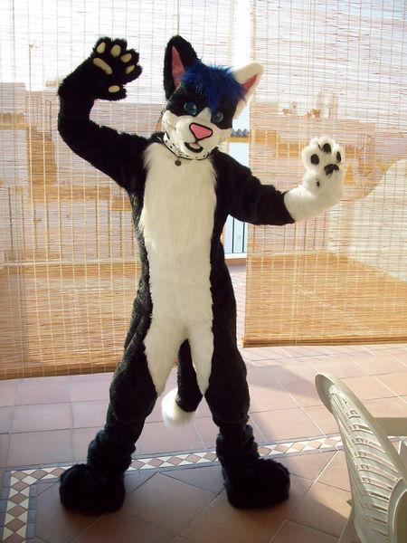 Maho Wikifur The Furry Encyclopedia