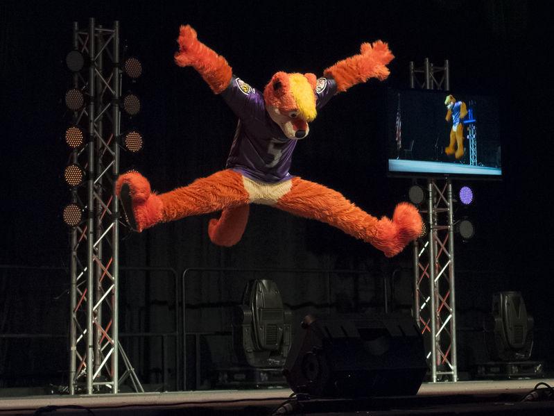 Fursuit dance competition  WikiFur the furry encyclopedia