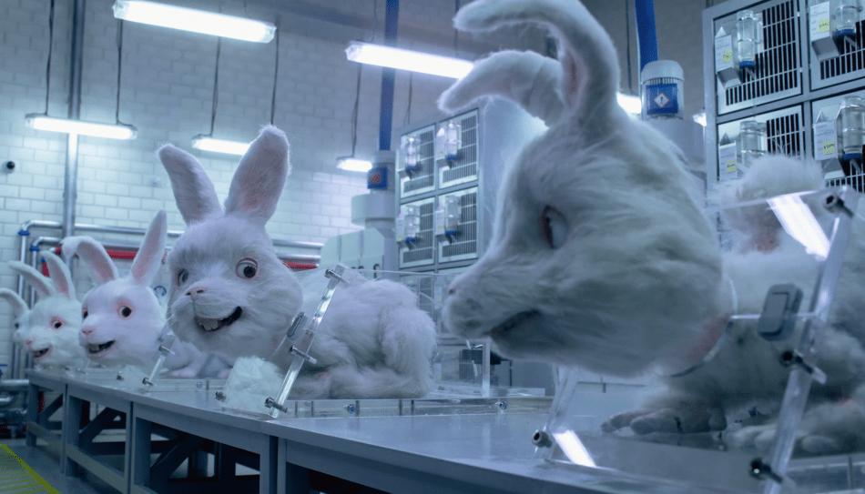 pruebas cosméticas en animales en México
