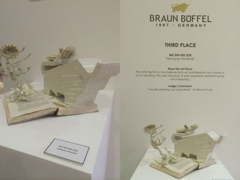 Braun Buffel Award Blog 003