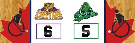 cheetahs-vs-gators-game-1-2
