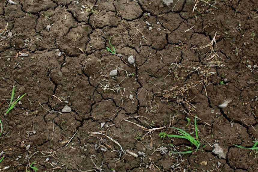 Tierra sin regar seca y agrietada