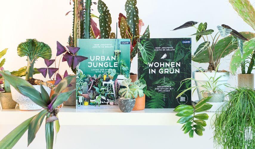 Libro Urban Jungle